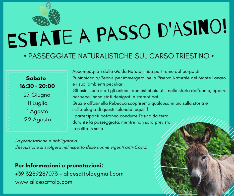 ESTATE A PASSO D'ASINO!