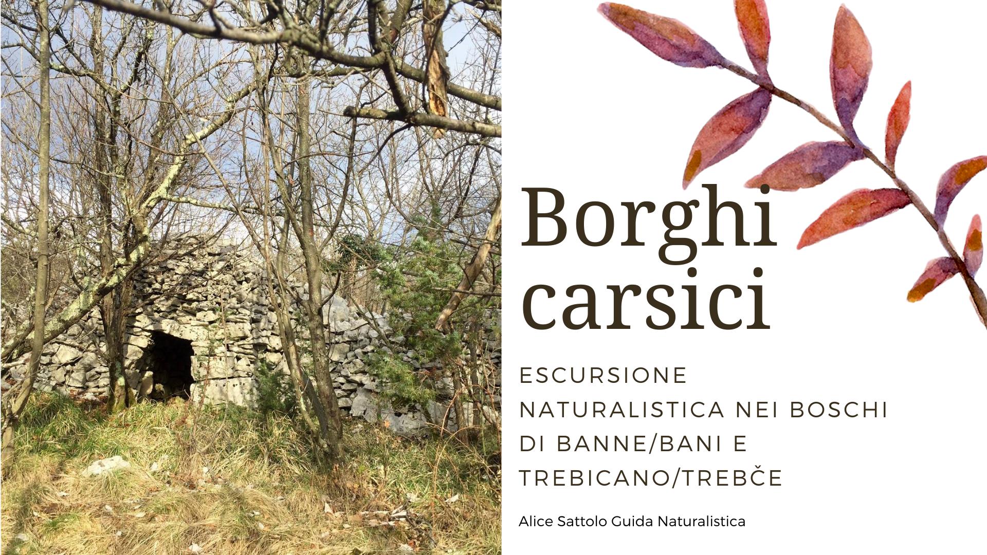 Borghi Carsici – I Boschi di Banne e Trebiciano