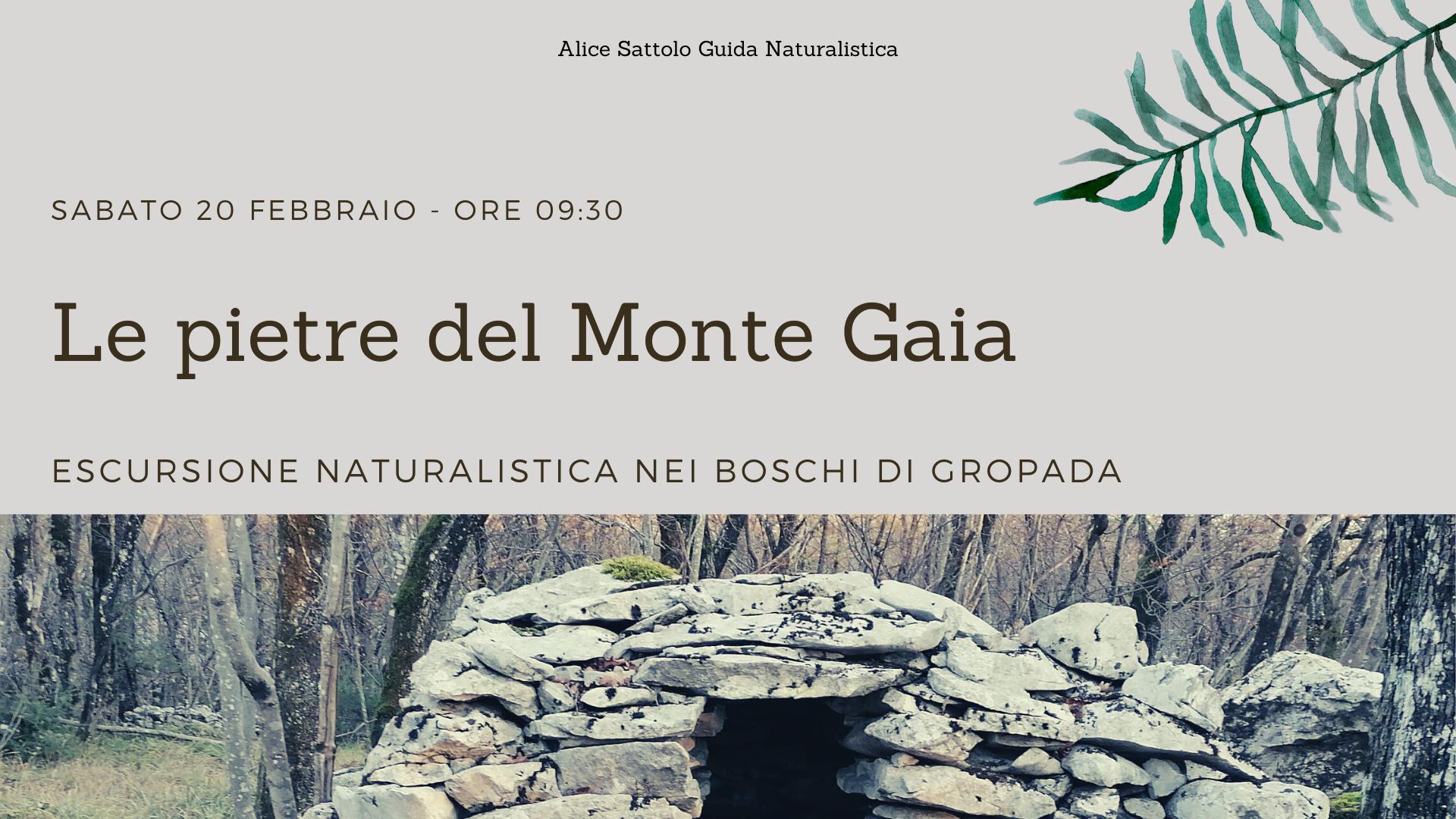 Le pietre del Monte Gaia – Escursione Naturalistica nei boschi di Gropada