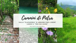"""Cammini di Pietra – Dalla """"Clapadoria"""" di Anduins fino a Mont lungo il """"Troi dai Asins"""""""